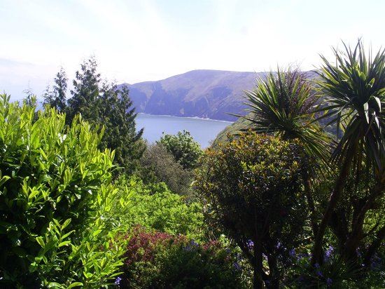 Lynton Cottage Hotel: Bedroom view over gardens
