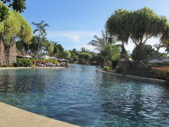 The Westin Golf Resort & Spa, Playa Conchal : Beautiful Pool