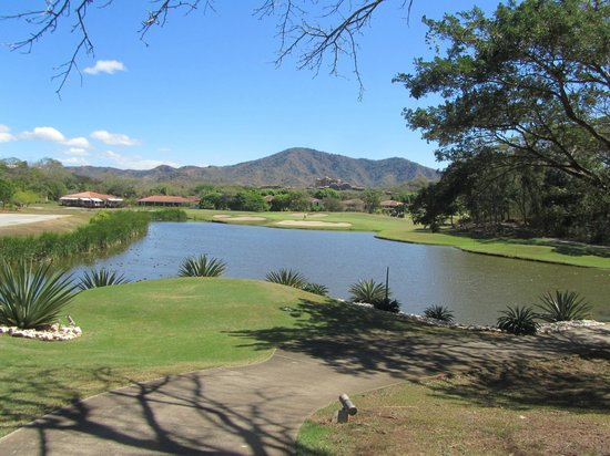 The Westin Golf Resort & Spa, Playa Conchal: Golf Course
