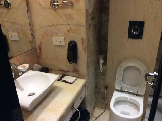 Royal Tulip Navi Mumbai: toilet
