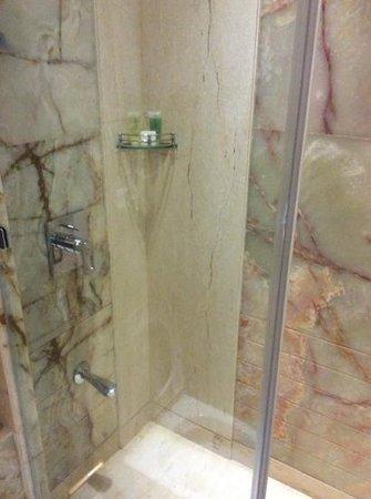Royal Tulip Navi Mumbai: shower