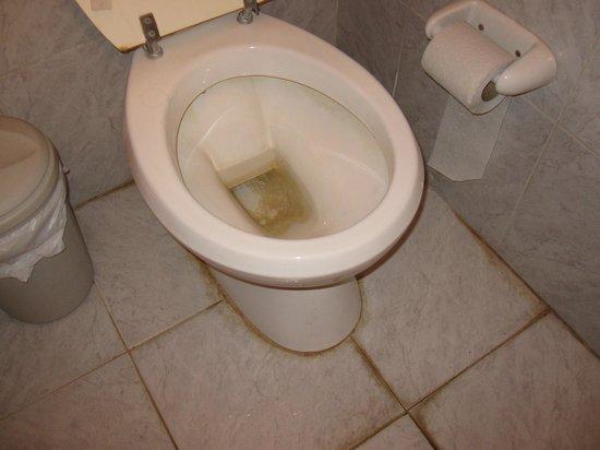 Hotel Lujan: Sarro en el inodoro