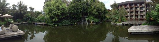 Renaissance Phuket Resort & Spa : Lagoon by the Loca Vore