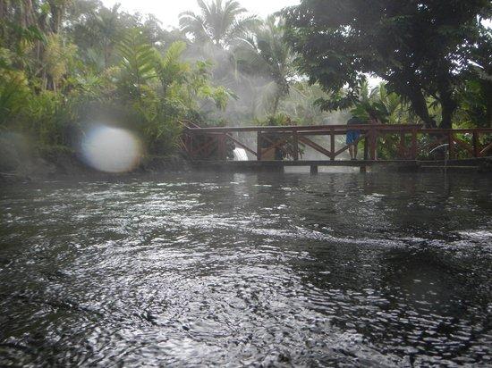 Tabacon Thermal Resort & Spa: Hot Springs