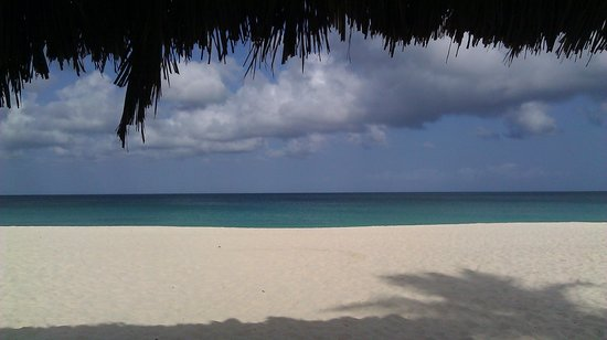 Eagle Beach : View from a thatched hut