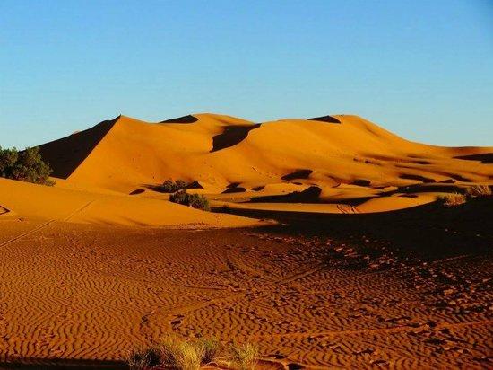 Desert Morocco Tours - Private Day Tours: Gran duna de Merzouga