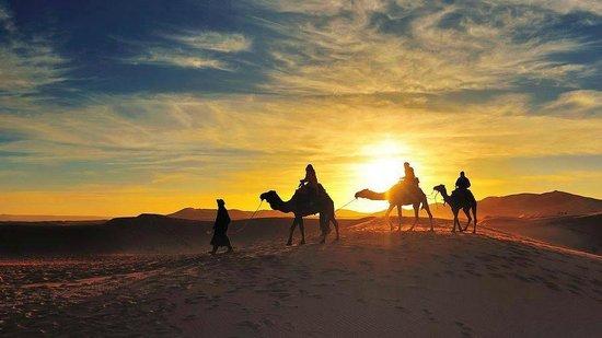 Desert Morocco Tours - Private Day Tours: Camel Trekking Merzouga Erg Chebbi