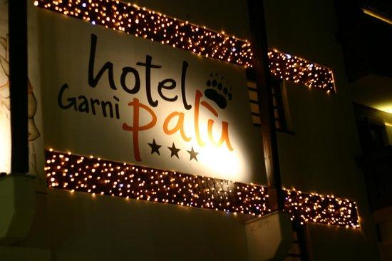 Hotel Garnì Palù: Winter's night