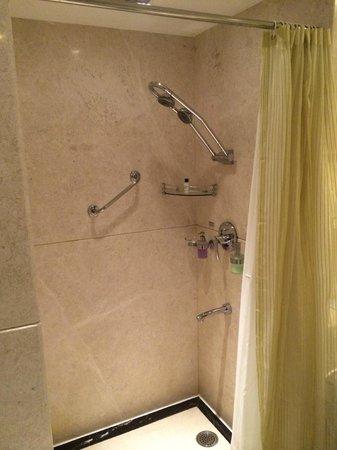 Radisson Blu Hotel Chennai : bit conjested shower area