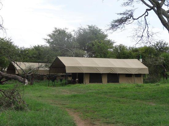 Kati Kati Tented Camp: View of tent