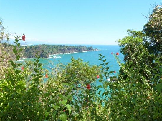 Playa Manuel Antonio: una parte del mirador