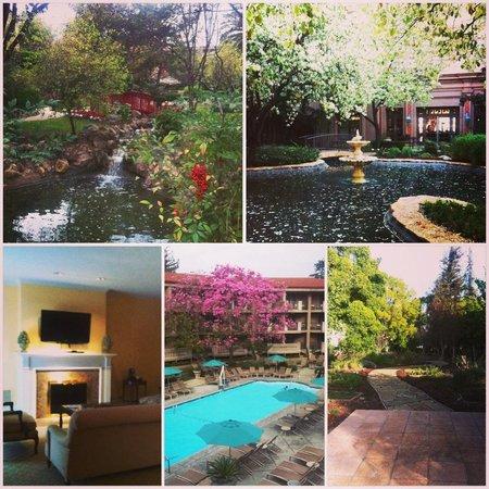 The Langham Huntington, Pasadena, Los Angeles: pretty place