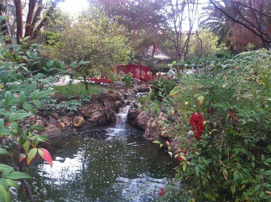 The Langham Huntington, Pasadena, Los Angeles: japanese garden