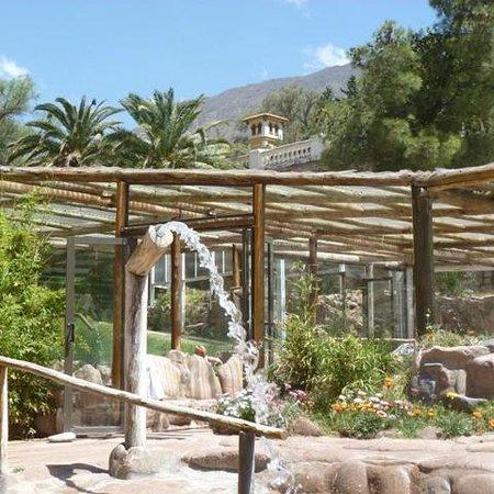 Hotel & Spa Termas Cacheuta : zona de piletas termales