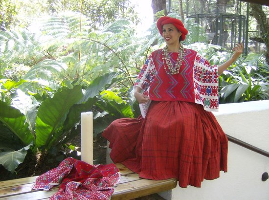 Casa Santo Domingo: another greeter at the luncheon