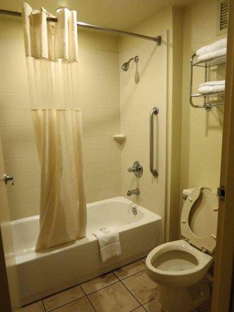 Rodeway Inn & Suites North : Room 221 - Bathroom - looked clean, smelled  alittle musty