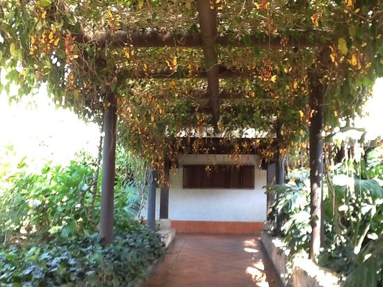Casa Santo Domingo: outdoor corridor with gorgeous flowers