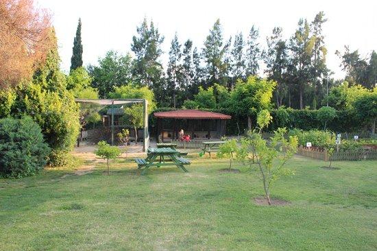 Otium Eco Club Side: Зоопарк.