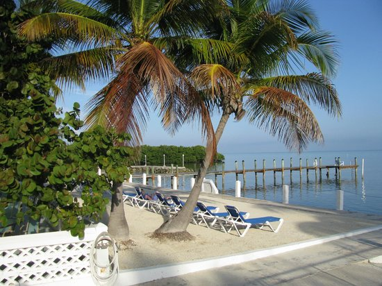 Pines and Palms Resort: Lounging area and dock