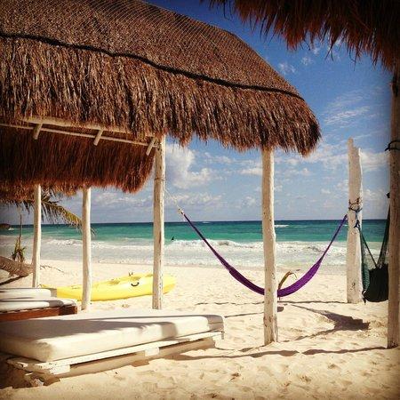 Posada Lamar: Perfect Beach!
