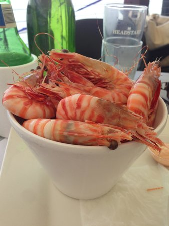 """The Tin Shed: My """"bucket of prawns"""""""