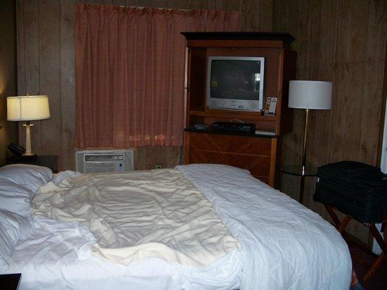 Vacation Inn Motel: room interior