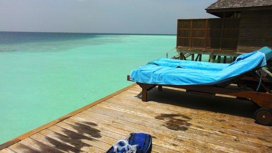Veligandu Island Resort & Spa: View  from 171