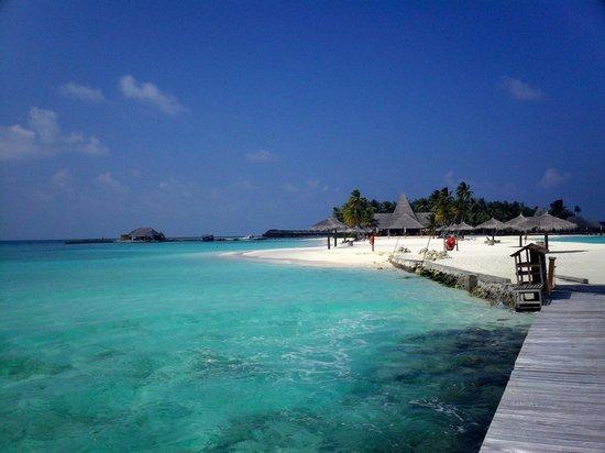 Veligandu Island Resort & Spa: Beach View / Thundi Bar