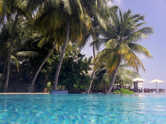 Veligandu Island Resort & Spa: Pool Area