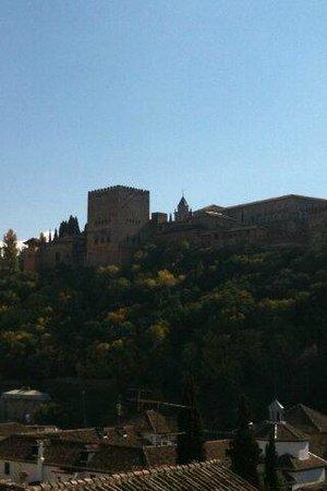 Carmen Del Cobertizo: La Alhambra de Granada