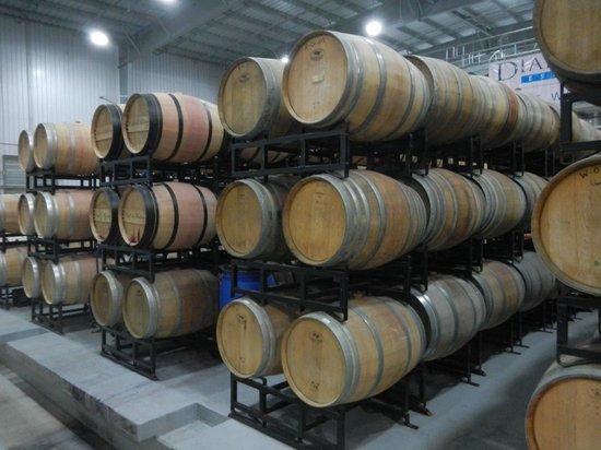Niagara Fun Tours: Wine aging in Barrels