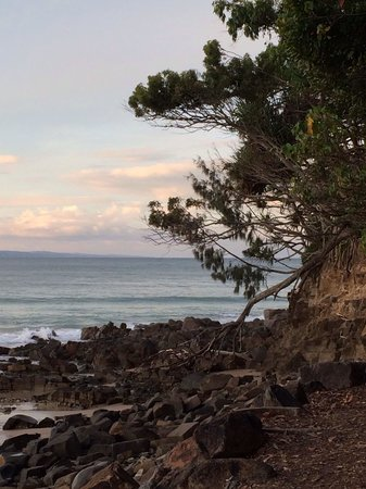 Noosa National Park: Down the Park
