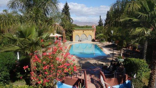 Riad Hotel l'Arganier d'Or: La piscine, ouverte même en plein hiver