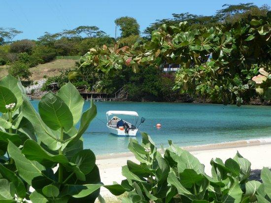Kalinago Beach Resort: View from hotel grounds