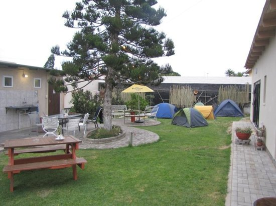Desert Sky Backpackers : View of the hostel's camping site.