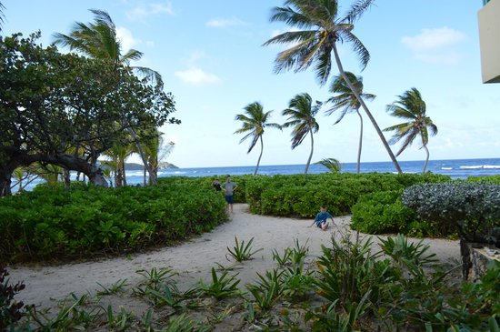 The Palms at Pelican Cove: view from patio