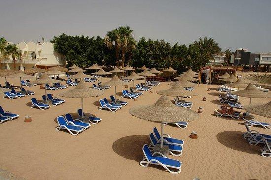 Club Hotel Aqua Fun : Beach