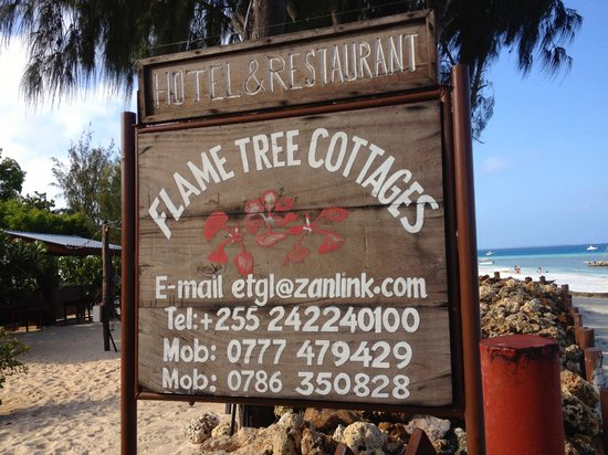 Flame Tree Cottages: We all recommend this place