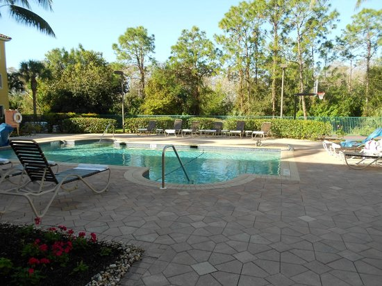Hawthorn Suites by Wyndham Naples: Pool