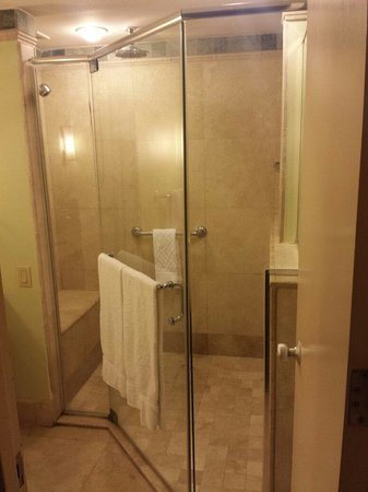 Caribe Hilton San Juan: Huge shower!
