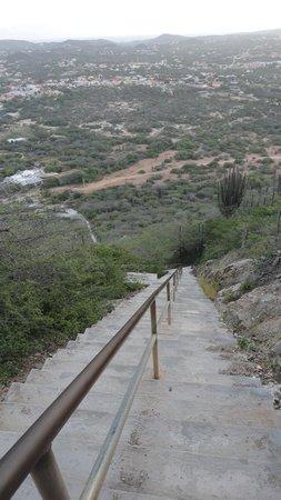 Hooiberg: On the way down