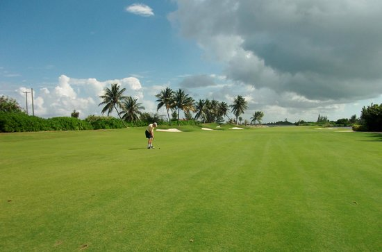 The Ritz-Carlton Grand Cayman: Blue Tip Golf Course at the Hotel