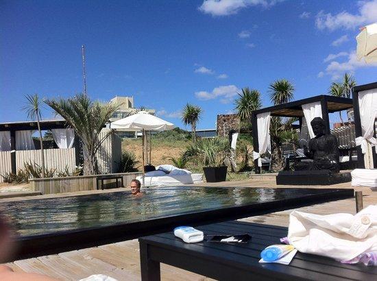 Serena Hotel Punta del Este: Vista piscina