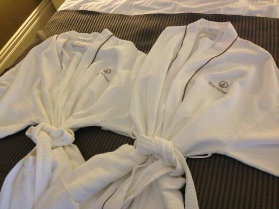 Hotel del Coronado: His and Hers robe provided in our room