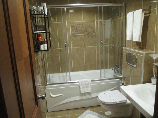 Senatus Suites : Great clean & spacious bathroom