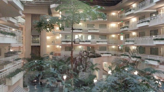 Embassy Suites by Hilton Hotel San Rafael - Marin County / Conference Center: Waterfall area in first lobby area