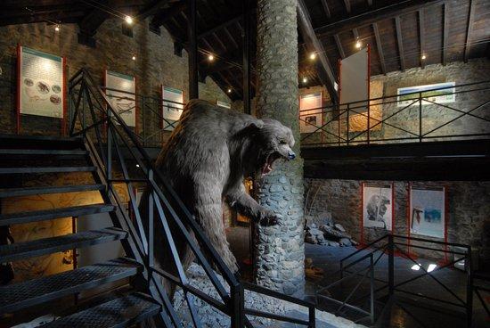 Equi Terme, Italy: Museo delle Grotte di Equi