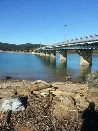 Paihia Harbour : Waitangi bridge