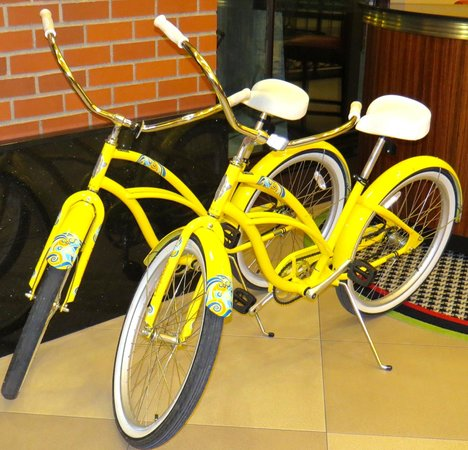 The Maxwell Hotel - A Staypineapple Hotel : Bicycles Available