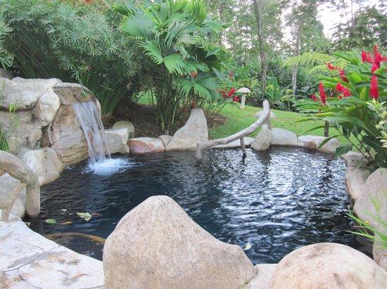 Hotel El Silencio del Campo: Hot spring pools were rarely used